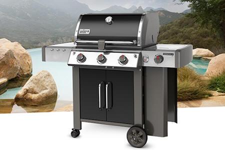 barbec21.jpg